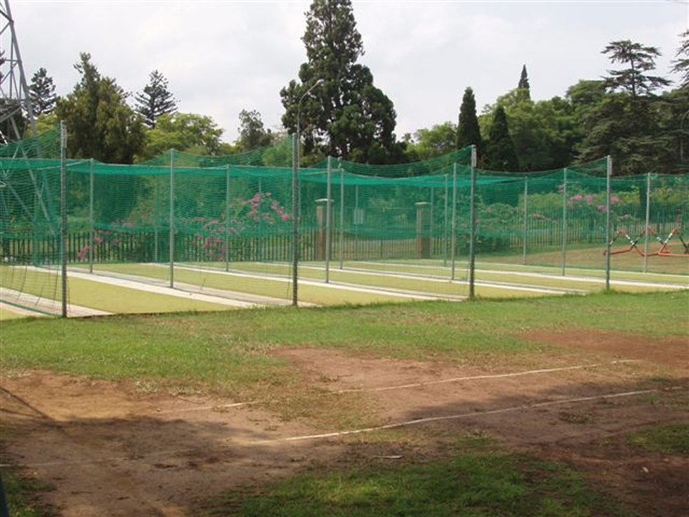 cricket net repairs